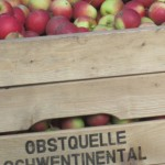 obstquelle